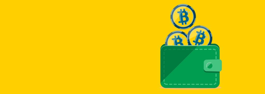 vad är en Bitcoin plånbok?